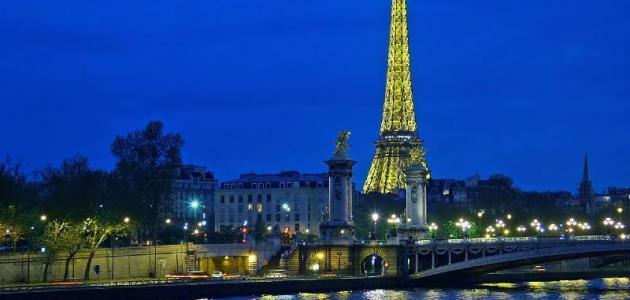 إغلاق طريق بفرنسا لشهرين لتحفيز تناسل الضفادع